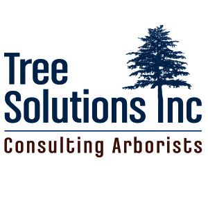 Tree Solutions, Inc.
